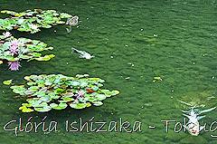 11-Glória Ishizaka - Tokugawaen - Nagoya - Jp