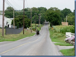 1684 Pennsylvania - Amish buggy
