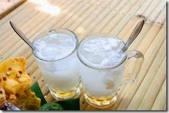 air kelapa minuman elektrolit alami
