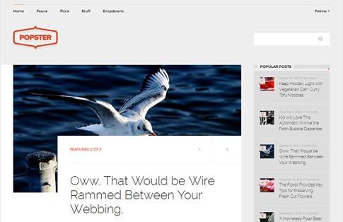 Theme magazine minimalista