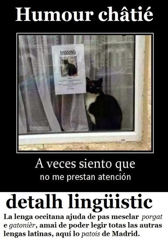 umor e istòria de gat