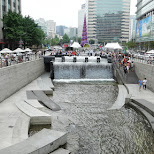 seoul stream in Seoul, Seoul Special City, South Korea
