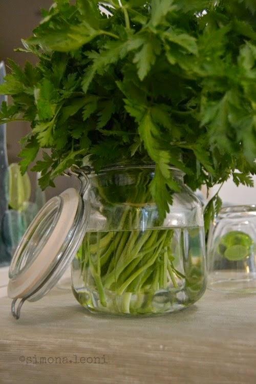 prezzemolo-in-vaso-tavola-evergreen