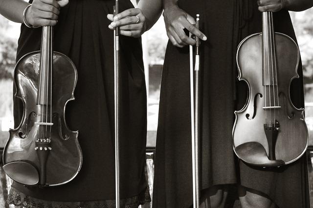 bw violins