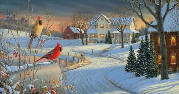 kesaksian dan inspirasi pria dan burung burung