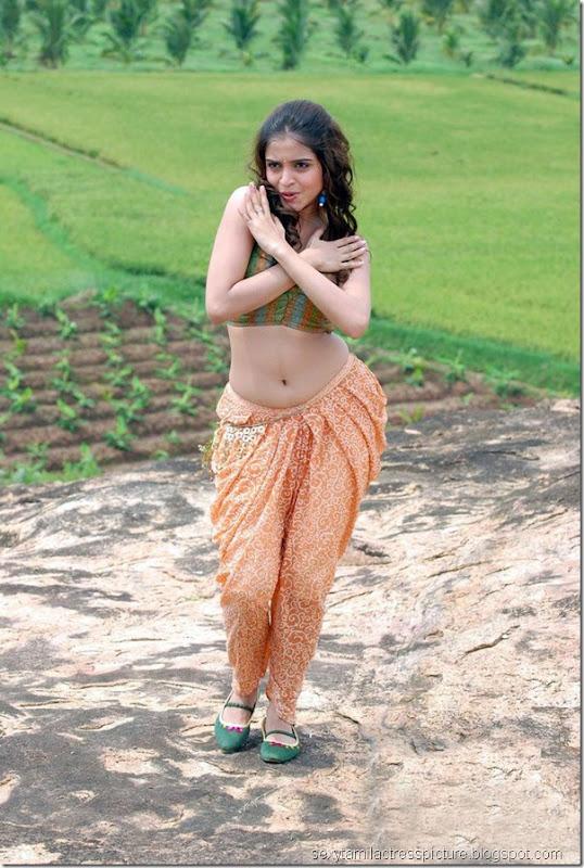 south-indian-actress-Sheena-Shahabadi-hot-exposing-navel-images