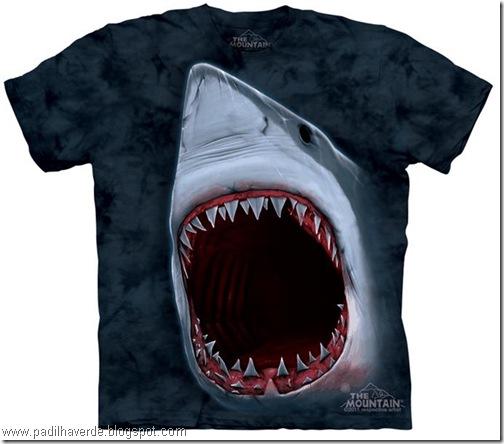 camisetas de Montain-10
