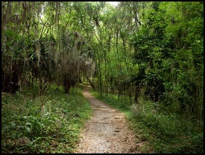 Bolen Bluff Trail-Spring Equinox 034