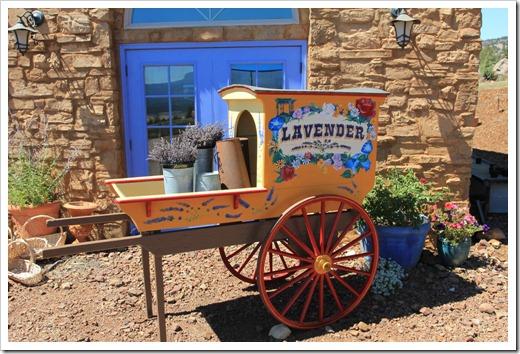 120720_mt_shasta_lavender_farm_054