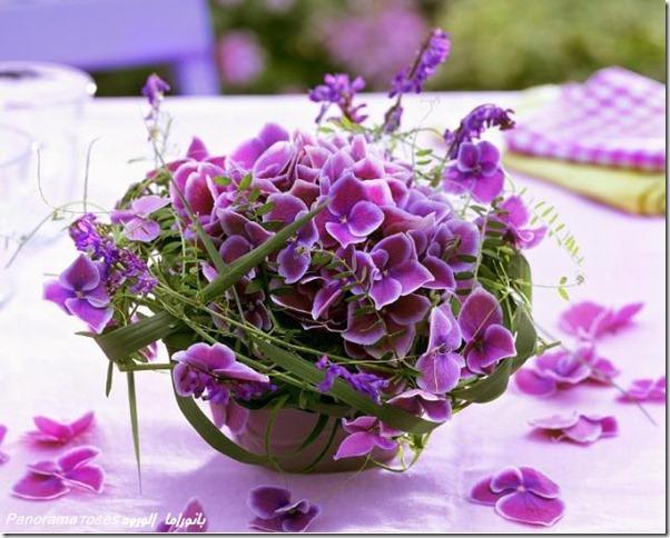 lilas-rosas-flores-facebook-tumblr-6