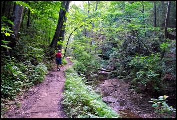 02 - Pretty hike along Whittleton Branch
