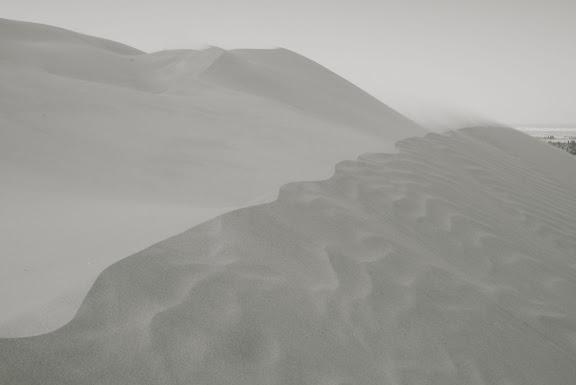 Dunes - voile de sable