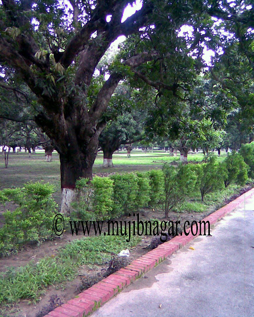 Mujibnagar-Memorial-Monument-Road.jpg