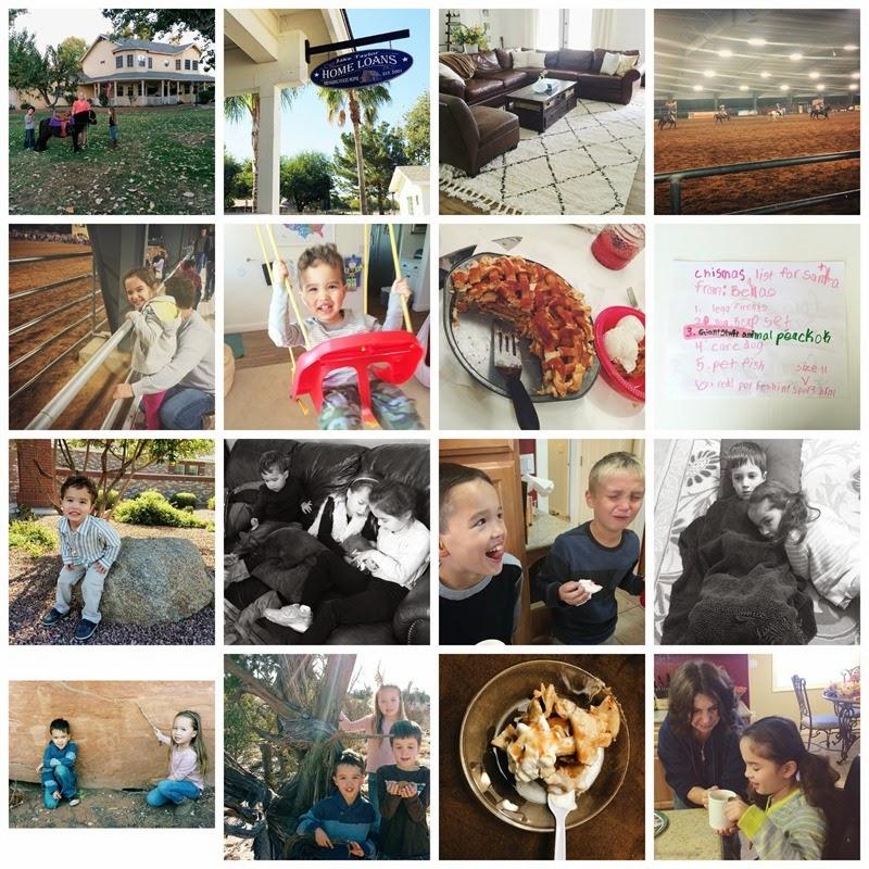 PicMonkey Collage12-3-14