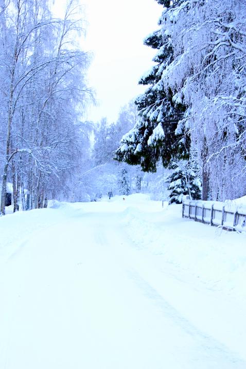 Vinterbilder Kiruna