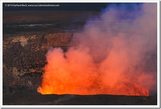 140724_HawaiiVolcanoesNP_0257