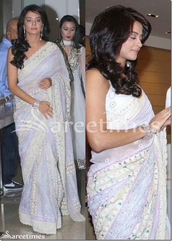 Surveen_Chawla_White_Shimmer_Saree