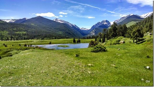 06-19-14 A Trail Ridge Road RMNP (393)
