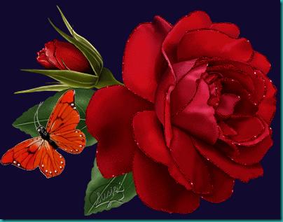 amor san valentin (3)