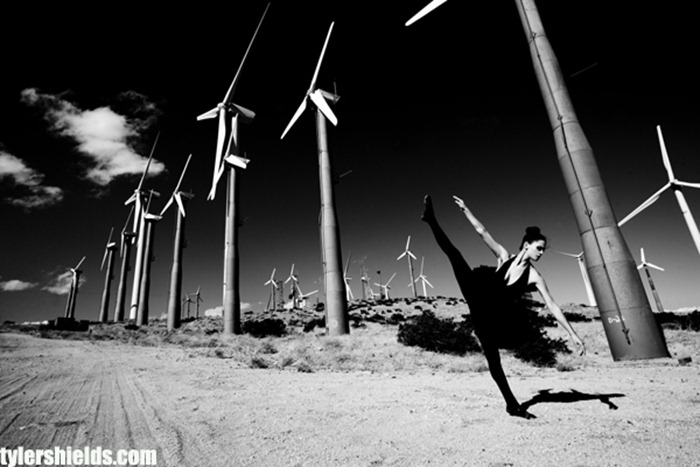 tylershields2