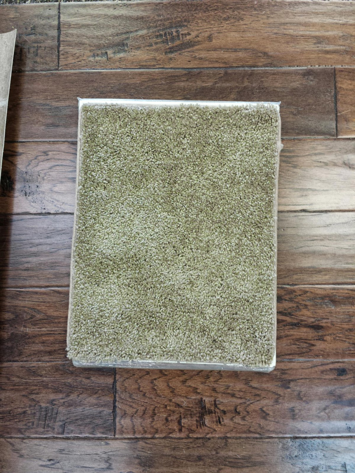 Gray Berber Carpet in addition Castlegate 35 Oz Indoor Frieze Area Rug Collection besides Castlegate 35 Oz Indoor Frieze Area Rug Collection together with Rite Rug Appointment furthermore See The World I T By Shaw Philadelphia. on froth carpet pad