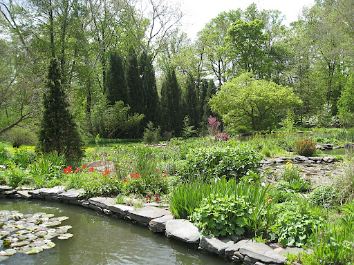 The ponds are lined with stone, as are the natural water courses throughout the garden.