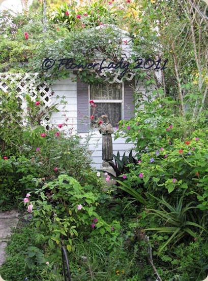 11-05-shed-gard3