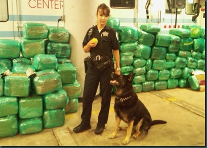 Chicago-police-pot-seizure