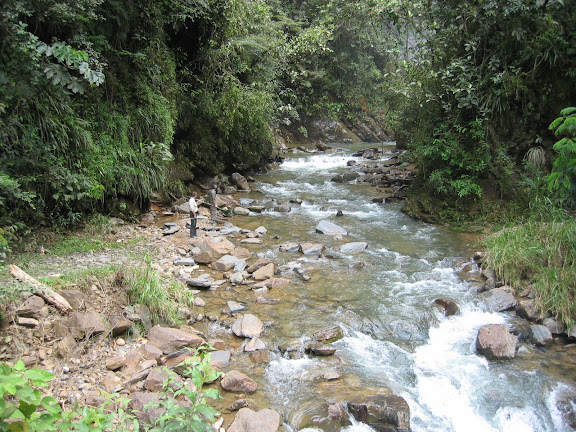 Rio (1100 m) entre Coroico et Caranavi (Bolivie), 14 janvier 2004. Photo : H. Bloch