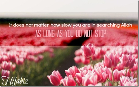 It does not matter how slow you are in searching Allah as LONG as You Do Not STOP