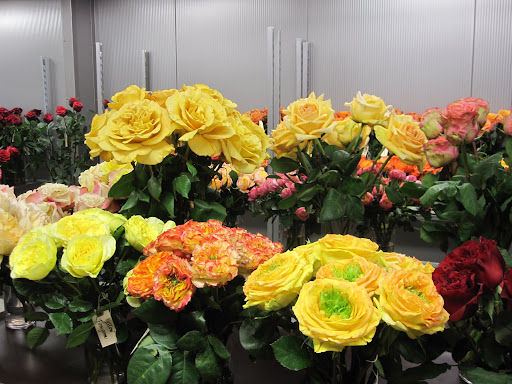 These roses are available for purchase at the store.