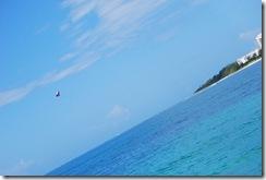 Bahamas12Meacham 541