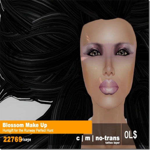 22769 ~ [visage] for Blossoms Make Up for Runway Perfect Hunt