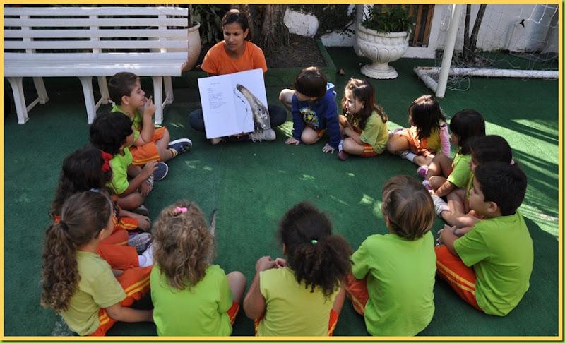 Infantil 4 Tarde - História no gramado1