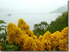 loch ness and broom