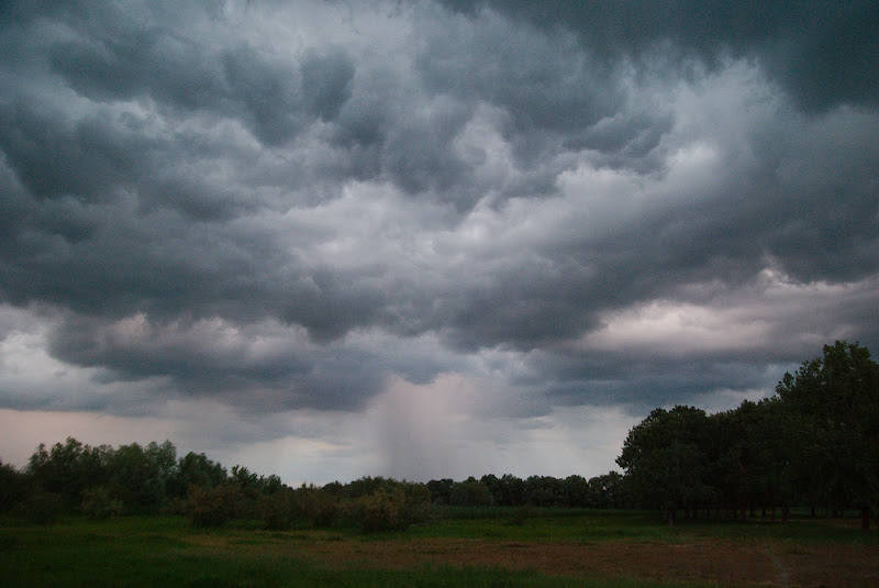Stormy clouds roll over the flat forests of the Danube Delta, Romania.