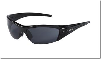 3M Polarized Glasses