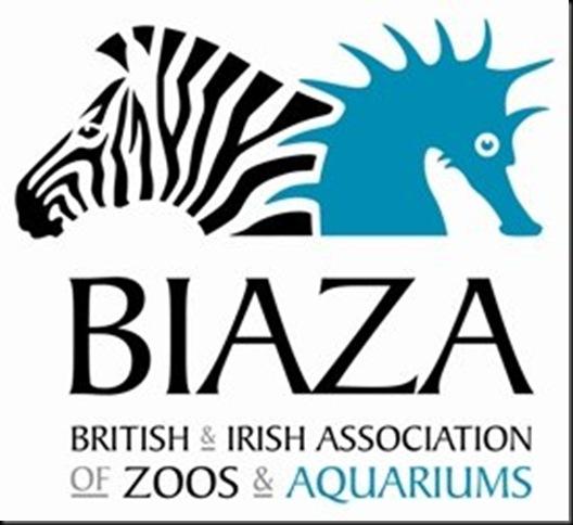 BIAZA A-K-320 for web