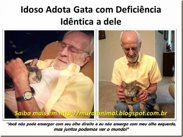 Idoso Adota Gata com Deficiência Idêntica a dele