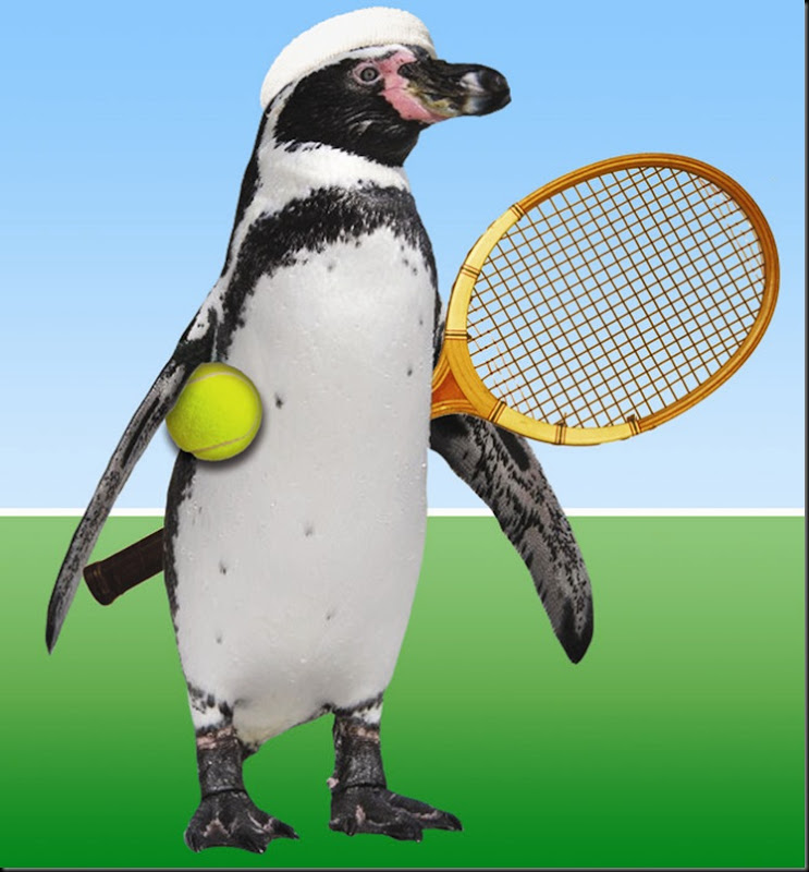 Web Tennis Dippy