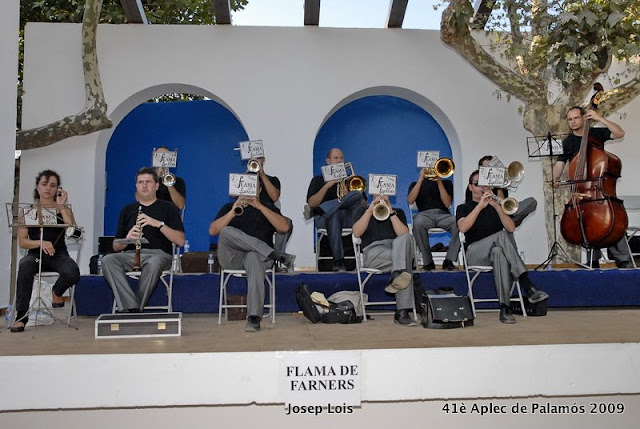 41 Aplec Sardana 2009_05.JPG
