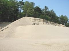 bog sand pile