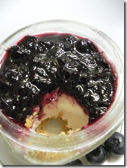 blueberry cheesecake 10