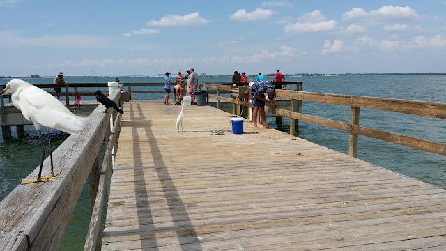 sanibel florida beach fishing pier