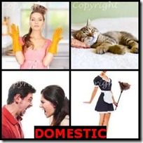 DOMESTIC- 4 Pics 1 Word Answers 3 Letters