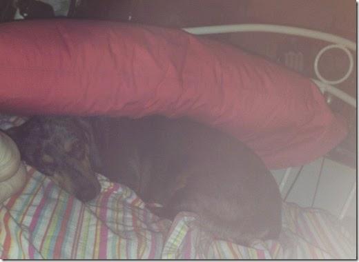 pillow-blanket