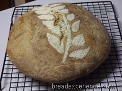 Maori-Bread 030