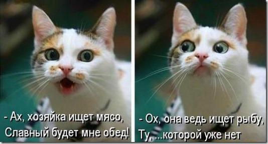 kotomatrix_00060