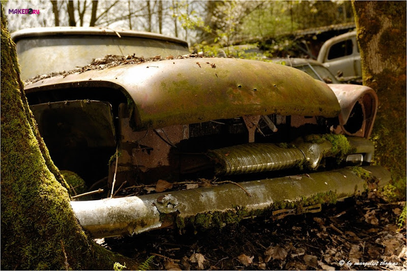 cars_020.jpg