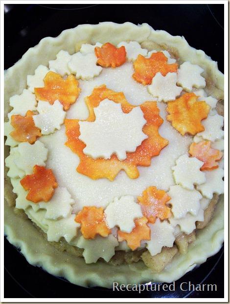Leafy Apple Pie 018a